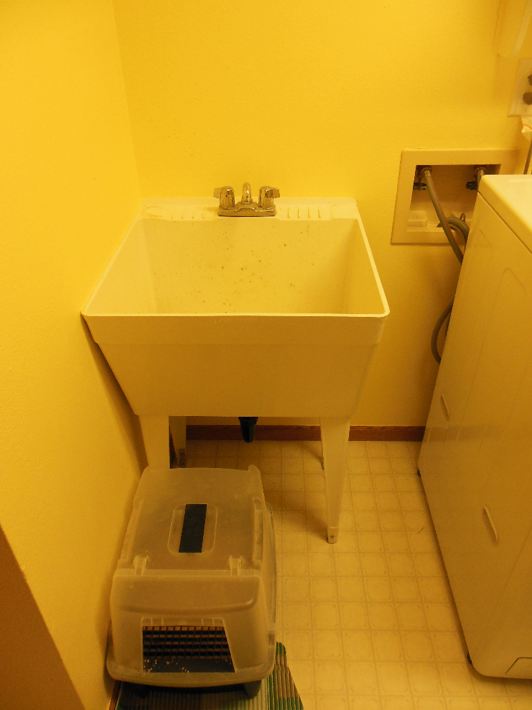 Laundry room. Litter box in front of utility sink = super annoying.