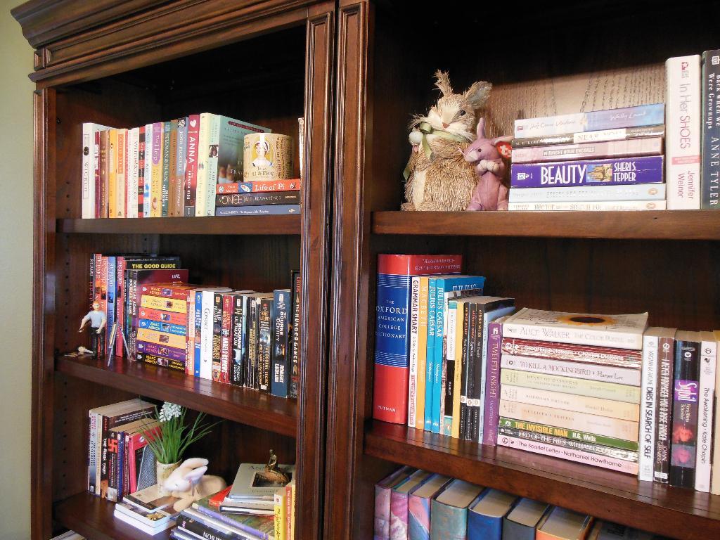 Bookshelves spring 2015